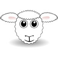 Sheep placenta skincare
