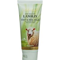Wild Ferns Lanolin Foot and Heel Balm